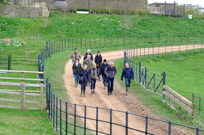 This mornings team from CD Tours walking to the gallops