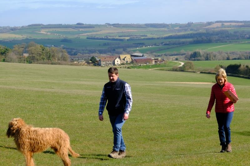 A good walk up the gallops to watch third lot