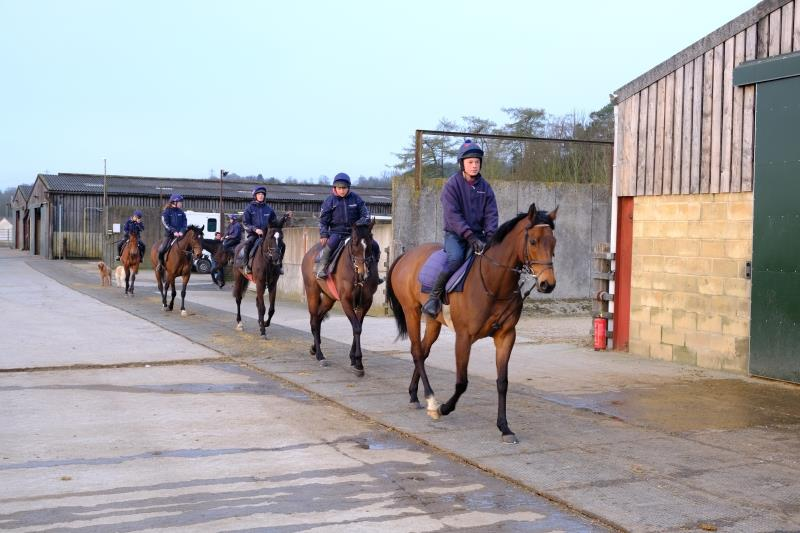 Archie Bailey leading the styring out first lot  on Early Learner