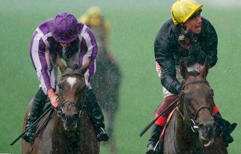 Frankie Dettori won the showpiece race on Crystal Ocean. In the rain..