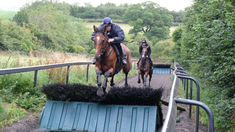 Bonne Fee and Ed Cookson jumping the plastic hurdles