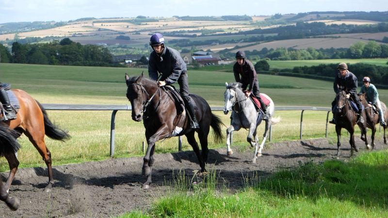 Cascaye leading the 3 year old grey Kayf Tara