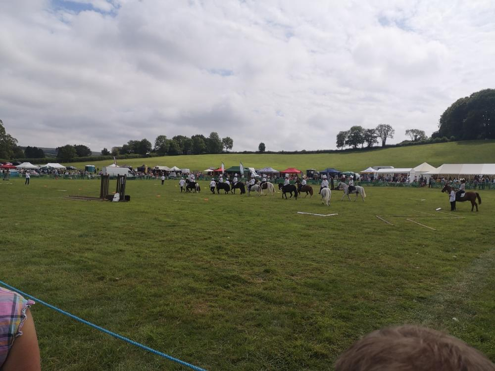 Ponies performing in the main ring
