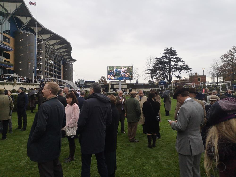 The paddock with Mr Grey Sky on the big screen