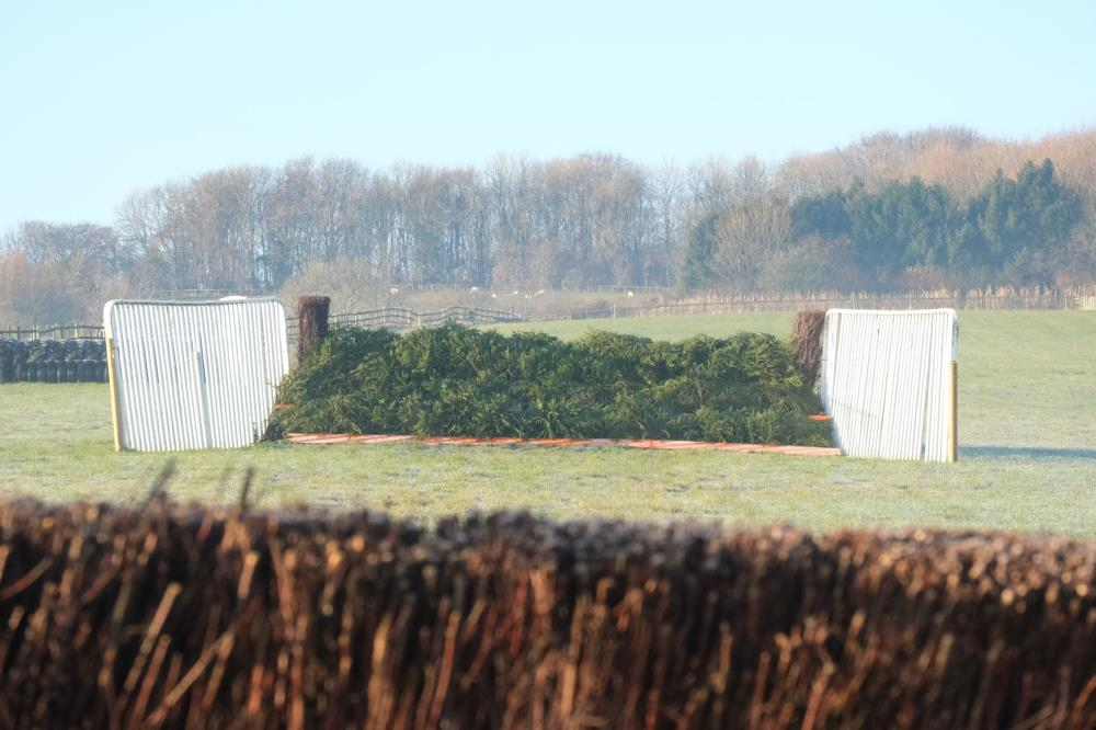 Our Grand National Fence ready for action