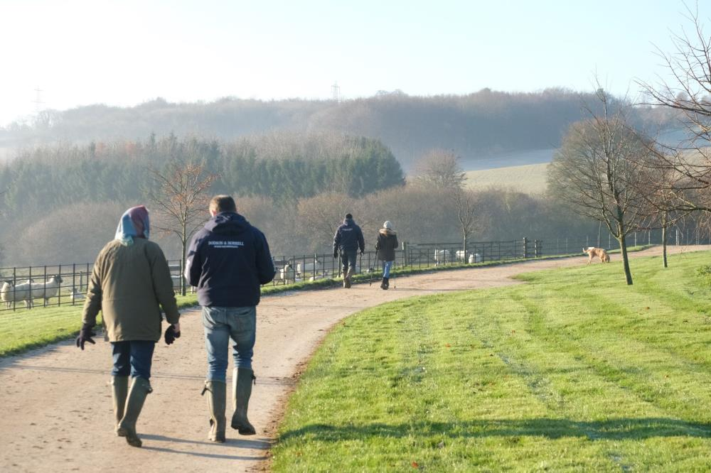 Matt, Mrs B, Mrs Wills and Peter on their way to the gallops with a fresh Dougie in front