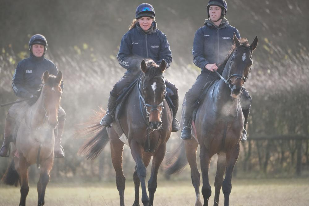 Flirtatious Girl, Station Master and Wandrin Star yesterday
