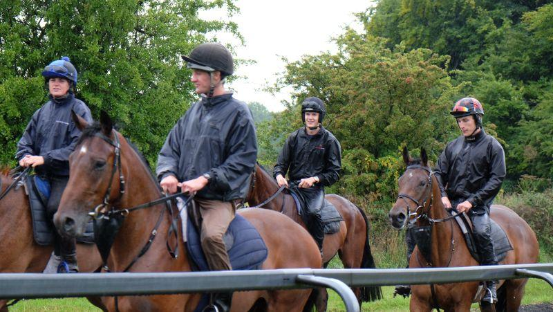 Max looks happy to be back at Thorndale having finished at The Newmarket Racing School