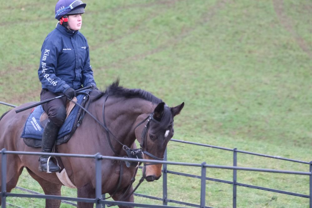 Minella Warrior heading to the gallops