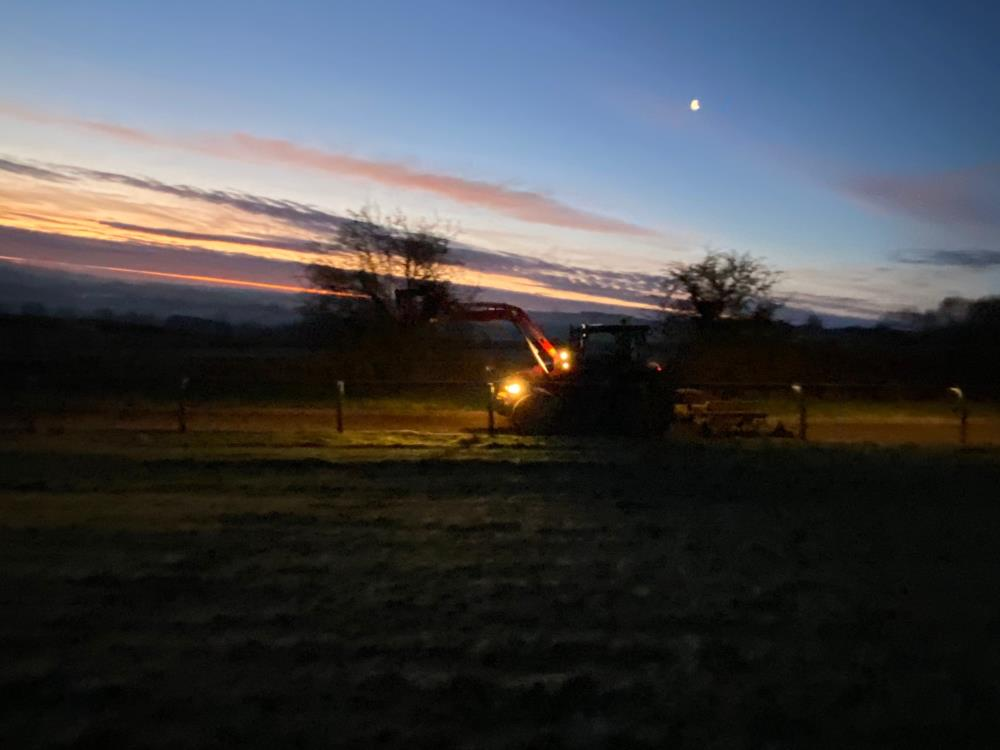 Tractor on the gallop harrowing early this morning
