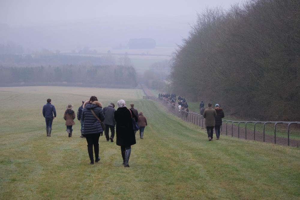 Walking down the hill after watching the horses