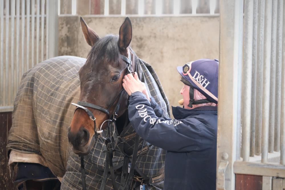 Diamond Gait being tacked up by Stevie Broadhouse. snack on the go?