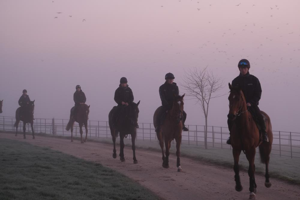 Heading off for first lot