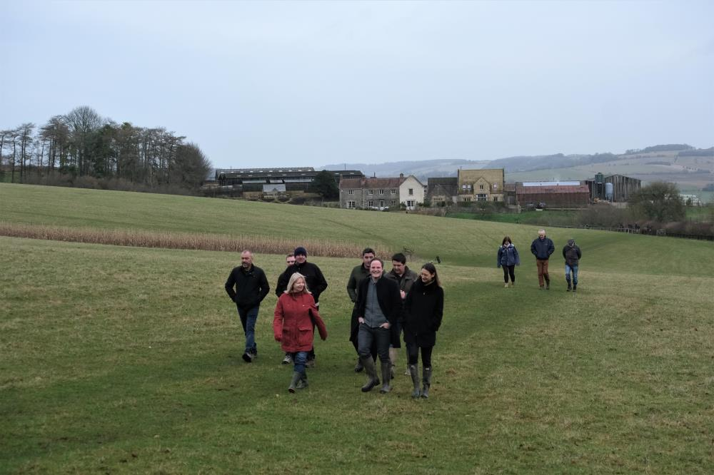 Walking to the gallops