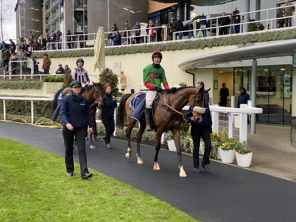 Two For Gold returns to the unsaddling enclosure