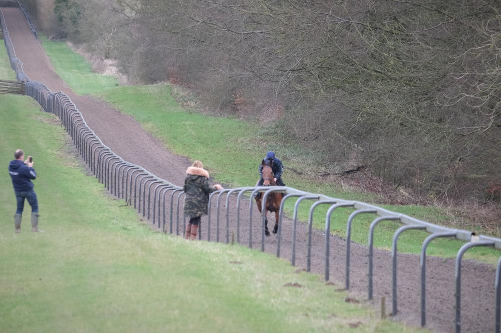 Carol watching her horse Subway Surf cantering