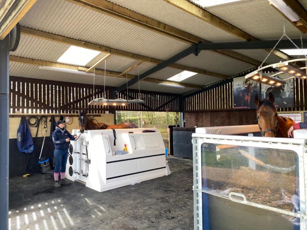Whose says we dont pamper our horses? Vinndication in the Spa while Imperial Aura has a session on the water treadmill.. they then swapped treatment!