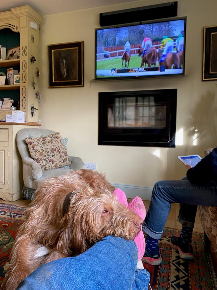 Watching the racing on Saturday