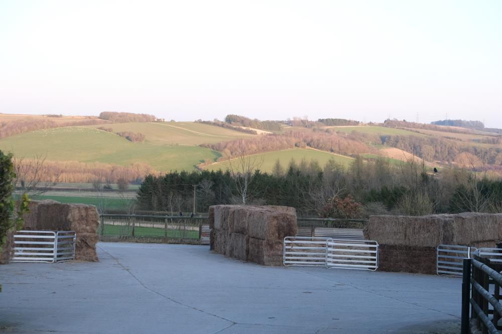 Sheep pens ready for the new lambs