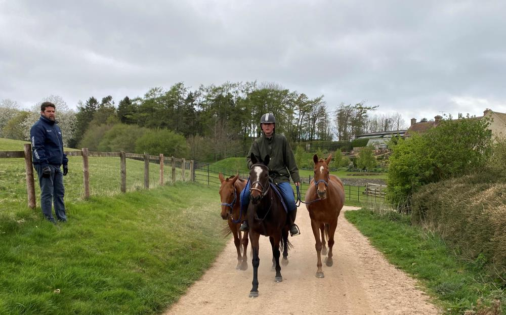 First lot.. Mat does not look that happy with the size of the horses or how short staffed we are that we have to lead them!!       Please note these are polo ponies!!