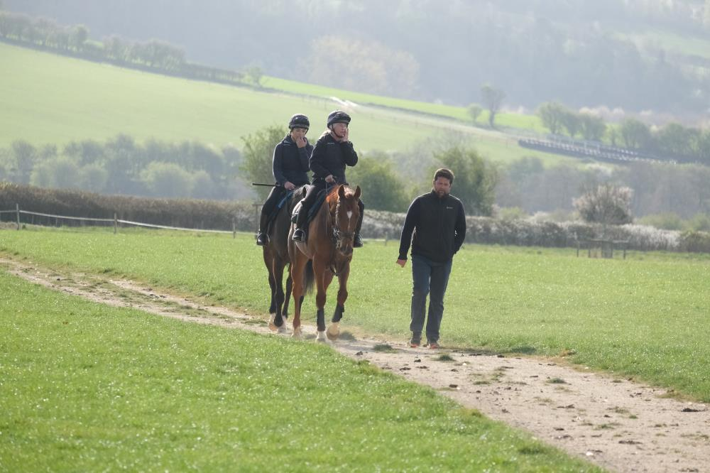 Headding back from the gallop