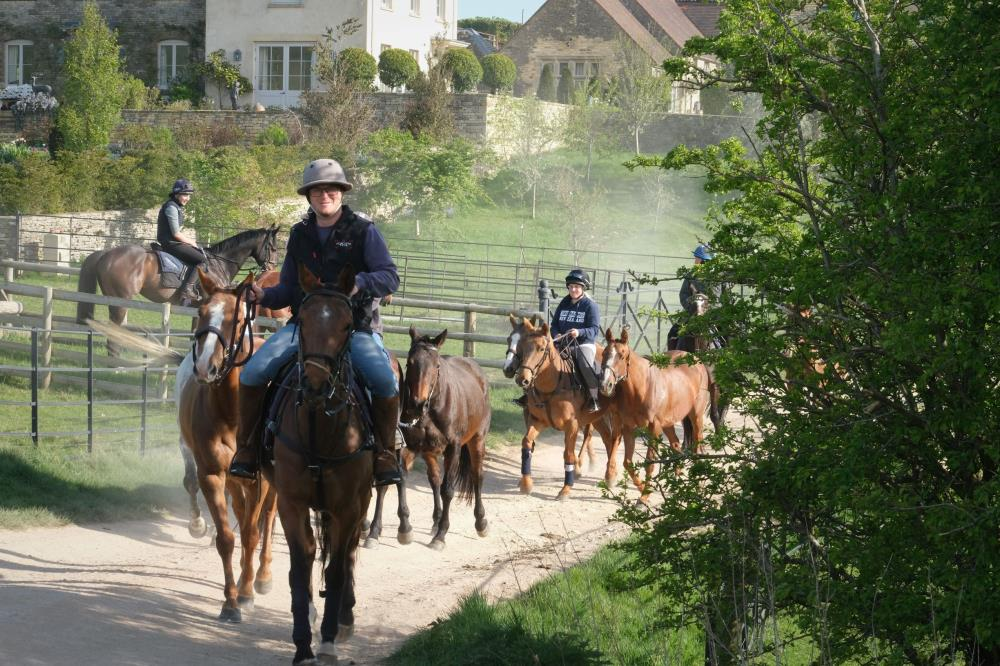 A strinof Polo ponies pass our horses