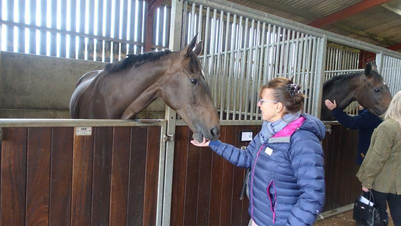 Happy Birthday to Geri Worcester.. seen her talking to her KBRP horse Vinndication