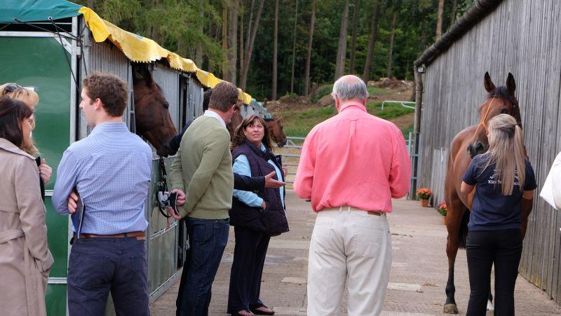 Dan Hall, Julie and David Martin looking at the horses for sale