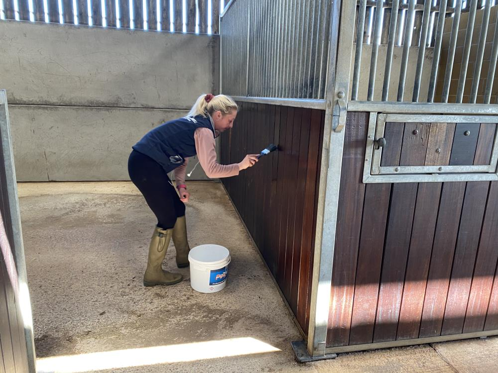 Stevie painting one of the stables..