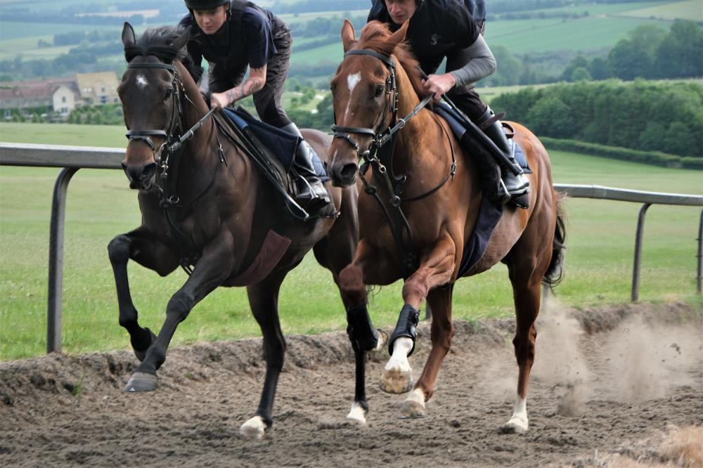 Blazon and Rhosneigr working