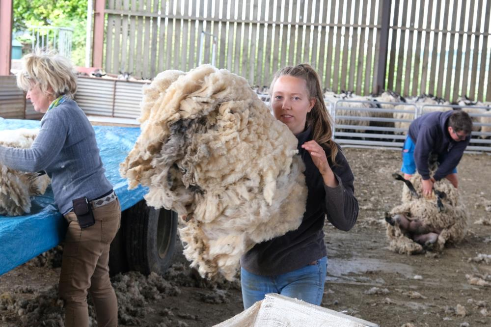 Packing the wool.. almost worthless?