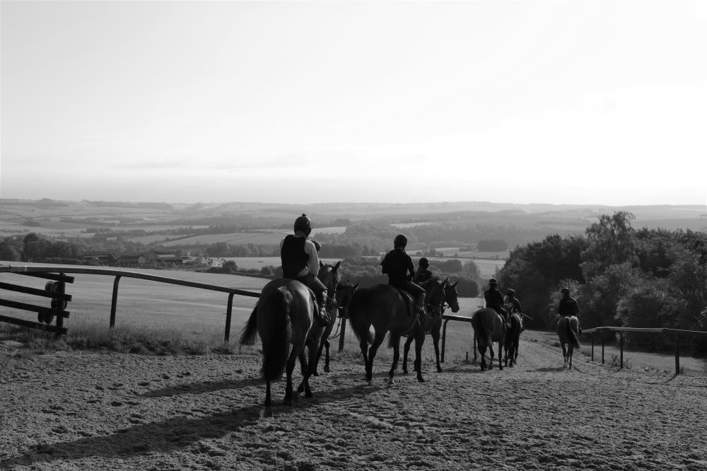 Heading back down the gallops and home