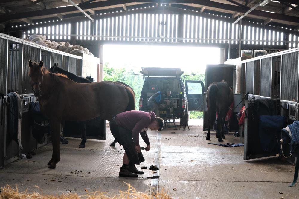 Horses back in and the blacksmiths get to work