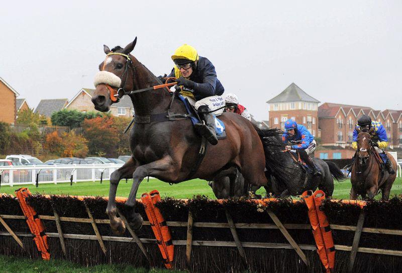Jumping the last at Stratford when winning his first hurdle race