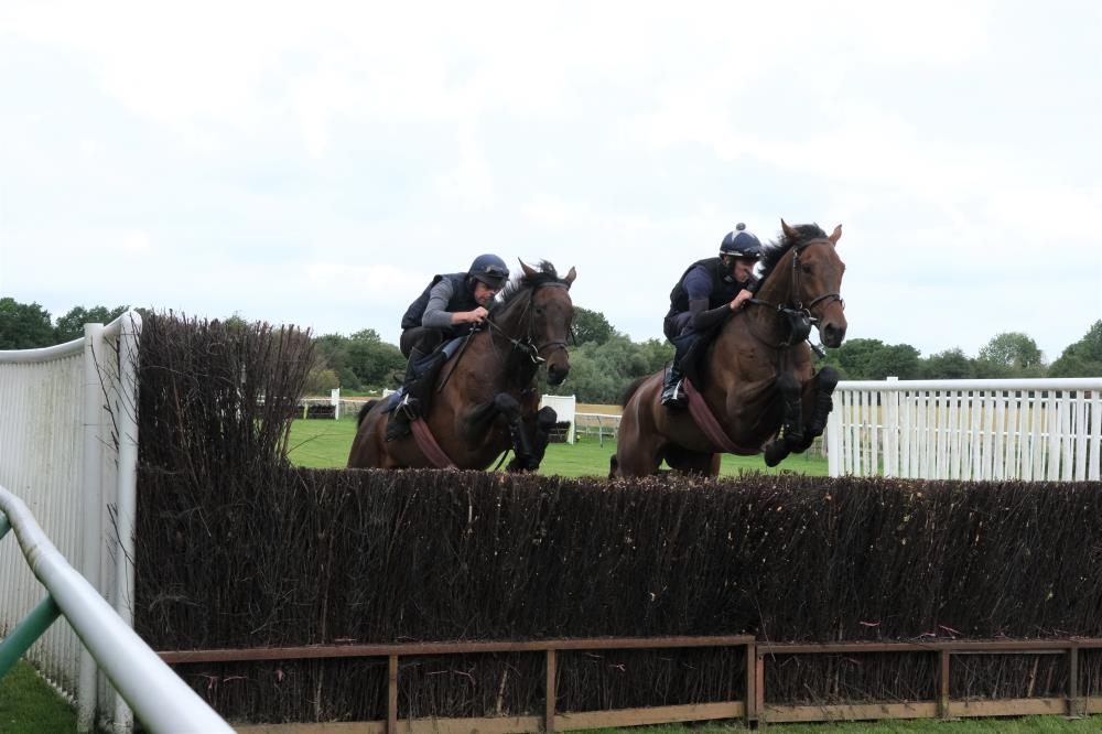 Diamond Gait and Thibault jumping fences