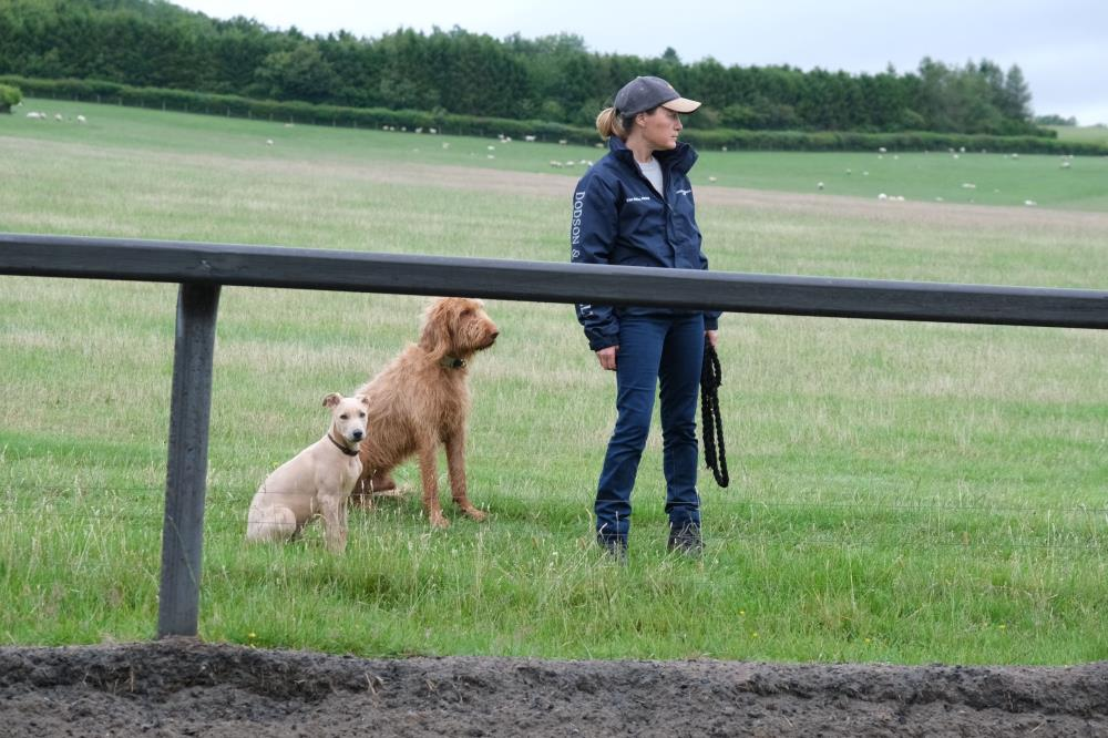 Gilbert, Dougie and Mrs B watching second lot