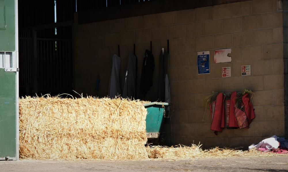 We have moved back to straw bedding again.. I so prefer as it makes a great bed for the horses