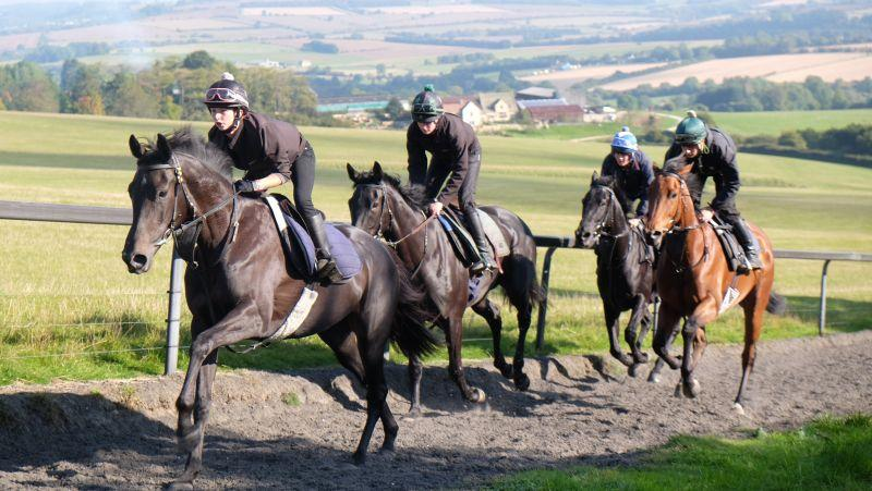 Widow On The Run, My Cousin Rachel, Kalanisi Glen and Bandon Roc