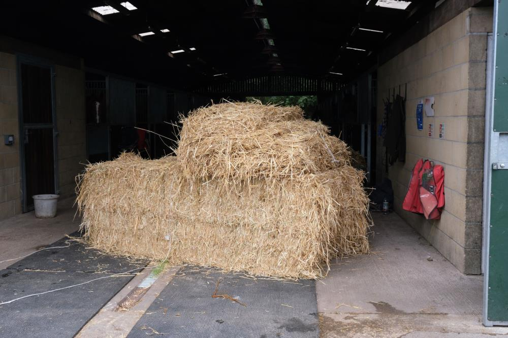 High quality straw for the horses bedding