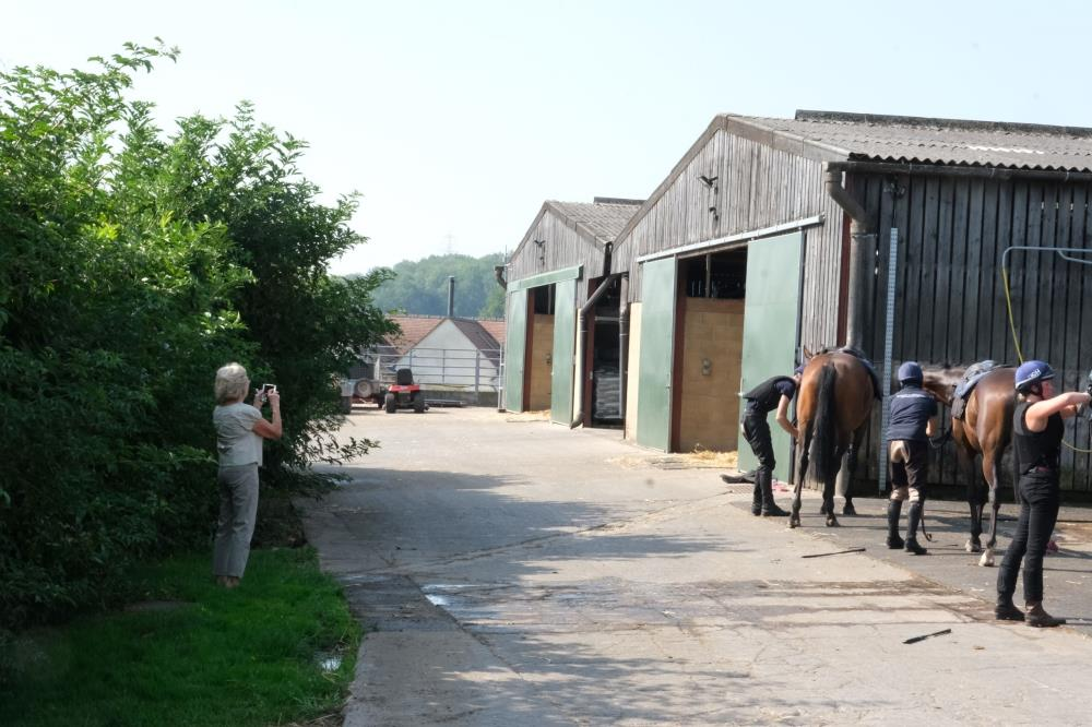 Mary Dulverton videoing her horses