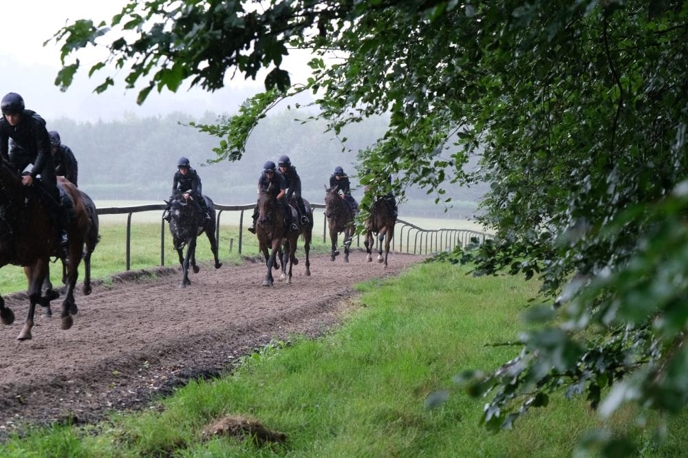 Cantering in the rain second lot