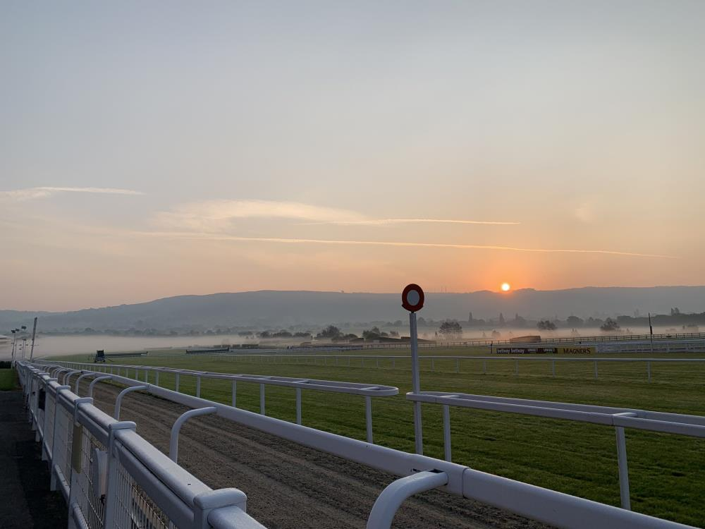 Ben Hastie's view of Cheltenham yesterday