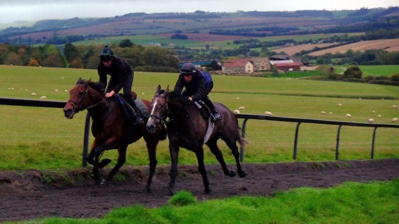 Dark first lot so not many photos.. Darna and Dueling Banjos