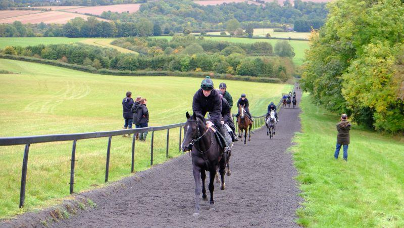 Milord leading third lot