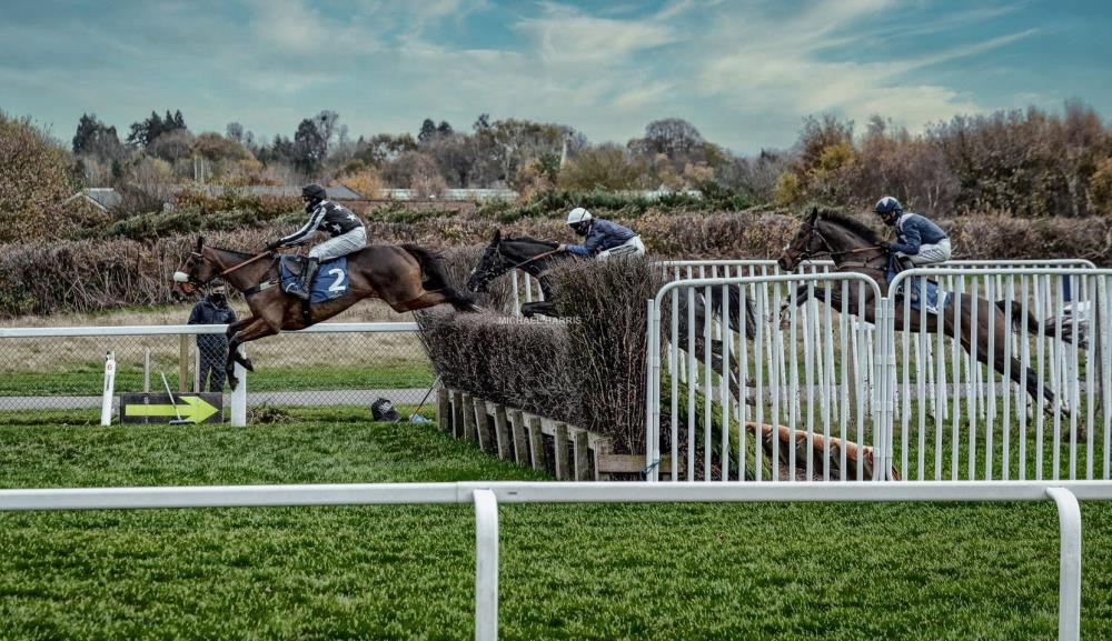 This is a cracking photo of Imerial Aura jumping down the far side at Ascot on Saturday.. Black Corton in second.. Thanks Michael Harris