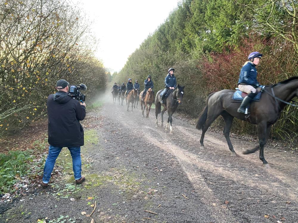 Filming the horses coming out of the woods