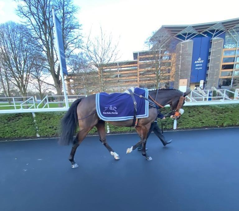 Leaving the pre parade ring