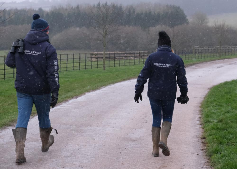 Mat and Maddie head to the gallops