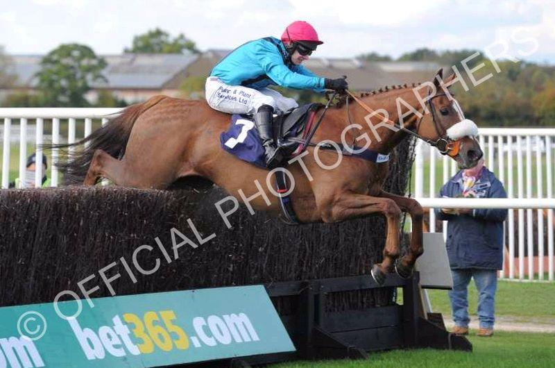Twelve Roses jumping the last at Wetherby yesterday