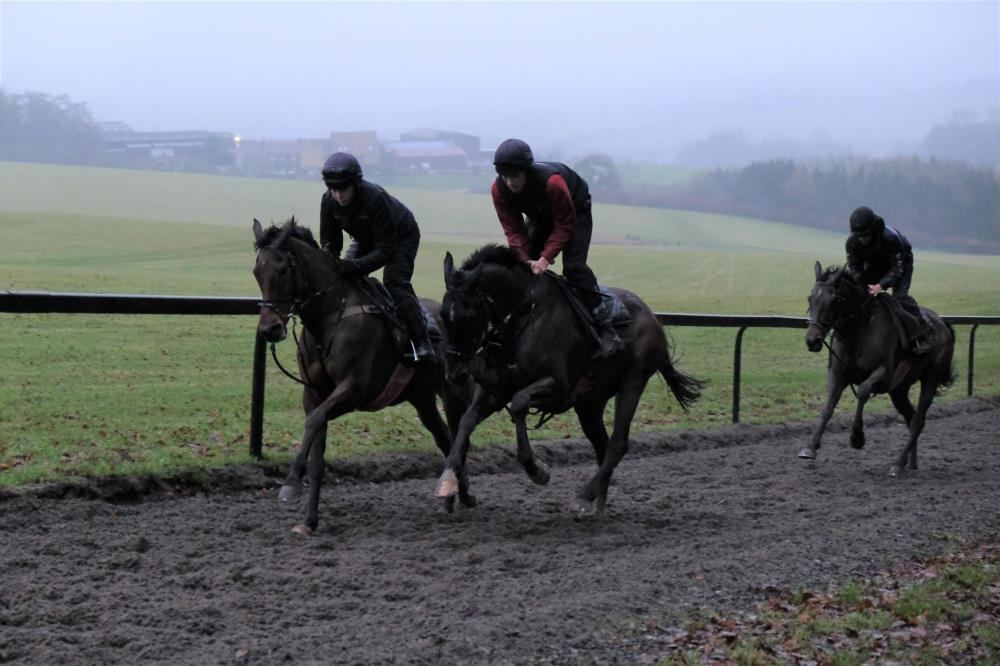 Rocky Treasure and Wandrin Star and Commodore Barry